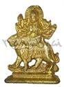 Picture of Durga Tiger
