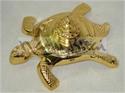 Picture of Meru Shri Yantra Tortoise Special