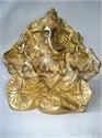 Picture of Ganesh Leaf