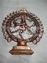 Picture of Natraj Snake