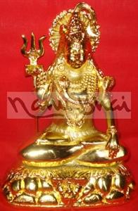 Picture of Shiva Ashirwad Ganga